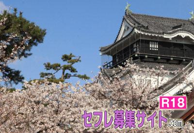 岡崎市の風景
