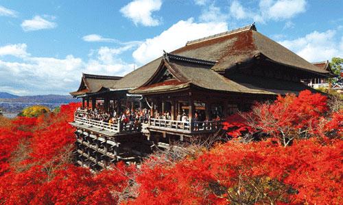 京都の情報