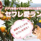 愛媛県でセフレを作る